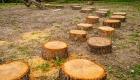Percorso di tronchi